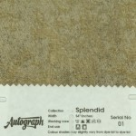 AUT-SPLENDID-01