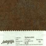 AUT-SPLENDID-03