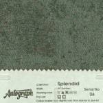 AUT-SPLENDID-04