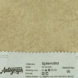 AUT-SPLENDID-05
