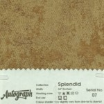 AUT-SPLENDID-07