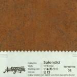 AUT-SPLENDID-08
