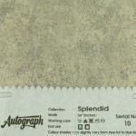 AUT-SPLENDID-10